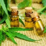 CBD oil and cannabis leaves